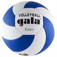 Tinklinio kamuolys GALA BV5083S