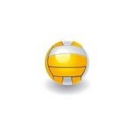 Paplūdimio tinklinio kamuoliai