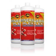 Vitaminai - mineralai